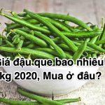 Giá đậu que bao nhiêu 1kg 2020, Mua ở đâu?