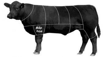 Giá thịt Trâu tươi bao nhiêu tiền 1Kg 2021? Mua bán ở đâu rẻ ngon