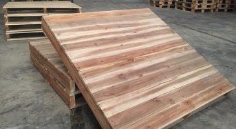 Giá gỗ keo bao nhiêu tiền 1m3 hôm nay 2021? Giá gỗ keo lá tràm, tai tượng
