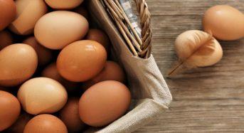 Giá trứng gà Công Nghiệp bao nhiêu 1 vỉ 2021? Mua ở đâu ngon nhất?