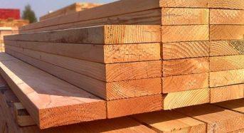 Giá gỗ thông bao nhiêu tiền 1 tấm, 1m3 2021? Mua ở đâu tốt rẻ?