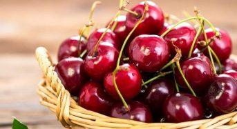 Giá quả cherry việt nam bao nhiêu 1kg hôm nay 2021? Mua ở đâu rẻ?