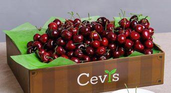 Top 9 Cửa hàng bán trái cây nhập khẩu quận 1 TpHCM tốt giá rẻ 2021